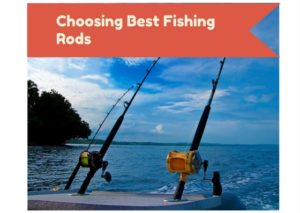 Choosing Best Fishing Rod Brands